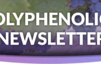 Polyphenolics Summer Newsletter